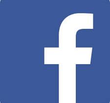 Fascisti su Facebook